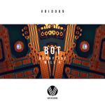 Danny Ray & Will K - Bot [Artwork]