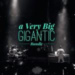 big-gigantic