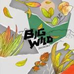 Big-Wild