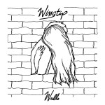 Wingtip_Walls