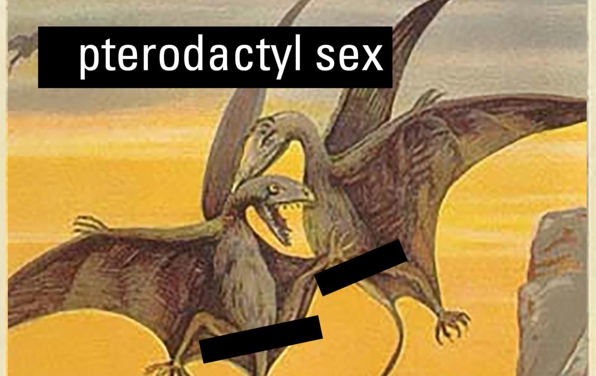 Terradactyl sex