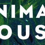 ANIMAL_IG