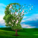 rb_cid_tree_1500