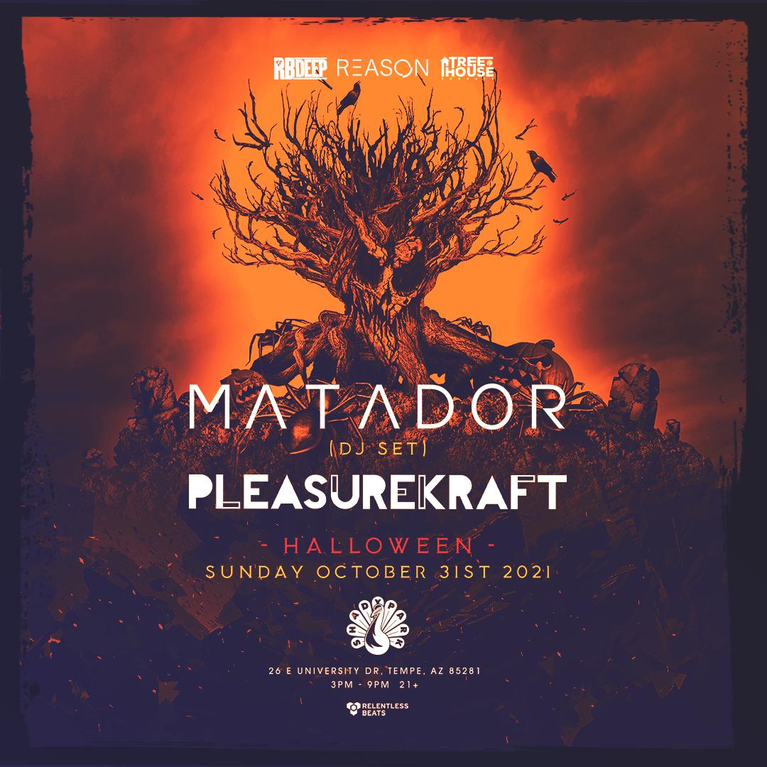 Flyer for Matador + Pleasurekraft | TreeHouse Sundays